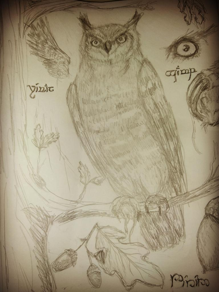 A page from a worn journal: Owl in the Oak | The Laurelin Archives
